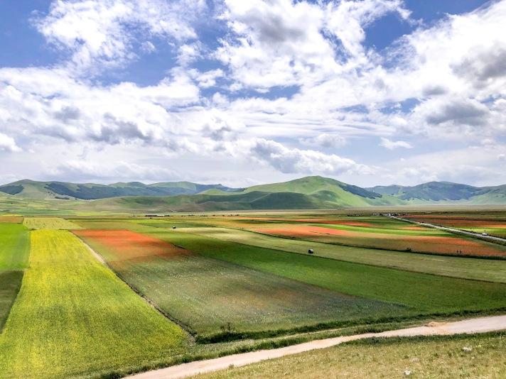 Casale Management - Travel - Italia - Umbria - Norcia - Castelluccio di Norcia - Trekking - Percorso - Outdoor - Neve - Fioritura - Vista paese - Prati in fiore